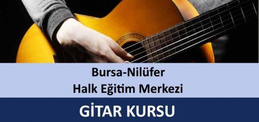 bursa-nilufer-halk-egitim-merkezi-gitar-kursu-520x245
