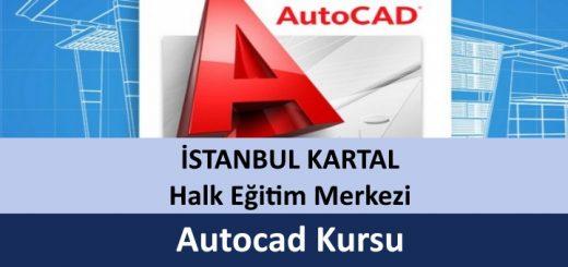 istanbul-Kartal-Halk-Eğitim-Merkezi-Autocad-Kursu-520x245