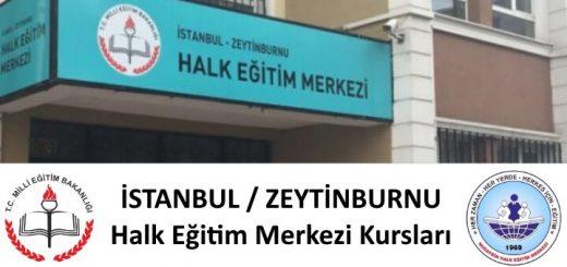 istanbul-zeytinburnu-halk-egitim-merkezi-kurslari-520x245