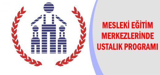 mesleki-egitim-merkezlerinde-ustalik-programi-520x245