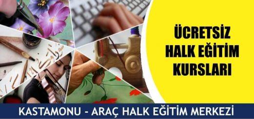 KASTAMONU-ARAÇ-HALK-EĞİTİMİ-MERKEZİ-KURSLARI-520x245