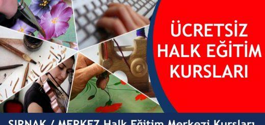 rnak-Merkez-ücretsiz-halk-eğitim-merkezi-kursları-520x245