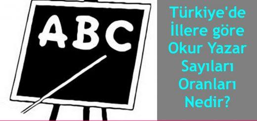 Türkiyede-illere-göre-okur-yazar-sayıları-oranları-nedir-520x245