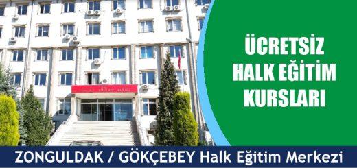 ZONGULDAK-GÖKÇEBEY-ücretsiz-halk-eğitim-merkezi-kursları-520x245