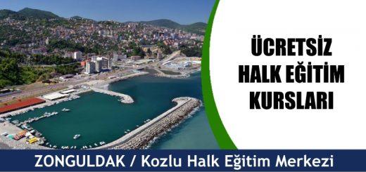 Zonguldak-Kozlu-ücretsiz-halk-eğitim-merkezi-kursları-520x245
