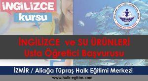 İZMİR Aliağa Tüpraş Halk Eğitimi Merkezi-usta-ogretici-alimi-2017-2018