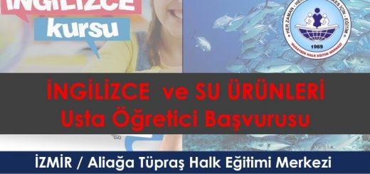 ZMİR-Aliağa-Tüpraş-Halk-Eğitimi-Merkezi-usta-ogretici-alimi-2017-2018-520x245