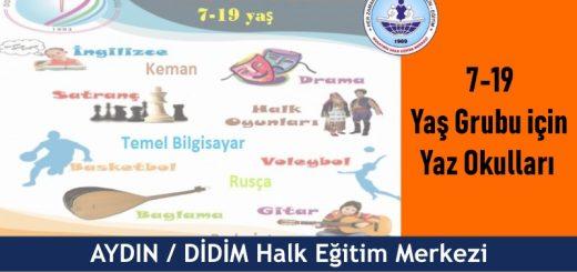 AYDIN-DİDİM-Halk-Eğitim-Merkezi-Çocuklar-için-Yaz-Kursları-520x245