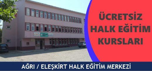 AĞRI-ELEŞKİRT-Halk-Eğitim-Merkezi-Kursları-520x245