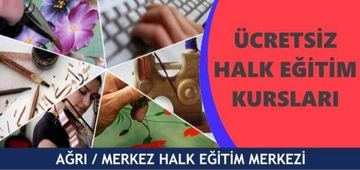 AĞRI-MERKEZ-Halk-Eğitim-Merkezi-Kursları-520x245
