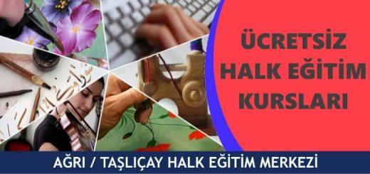 AĞRI-TAŞLIÇAY-Halk-Eğitim-Merkezi-Kursları-520x245