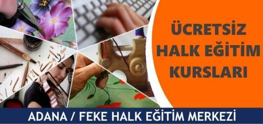 ADANA-FEKE-Halk-Eğitim-Merkezi-Kursları-520x245