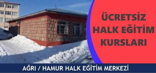 AĞRI-HAMUR-Halk-Eğitim-Merkezi-Kursları-520x245