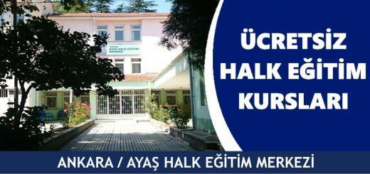 ANKARA-AYAŞ-Halk-Eğitim-Merkezi-Kursları-520x245