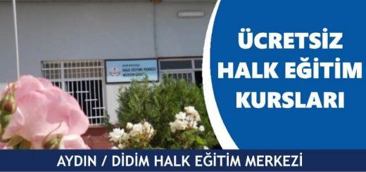 AYDIN-DİDİM-Halk-Eğitim-Merkezi-Kursları-520x245