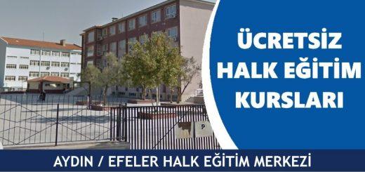 AYDIN-EFELER-Halk-Eğitim-Merkezi-Kursları-520x245