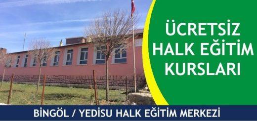 BİNGÖL-YEDİSU-HALK-EĞİTİM-MERKEZİ-KURSLARI-520x245
