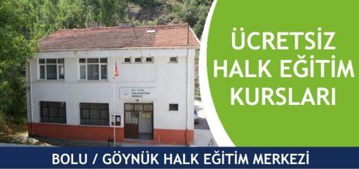 BOLU-GÖYNÜK-Halk-Eğitim-Merkezi-Kursları-520x245