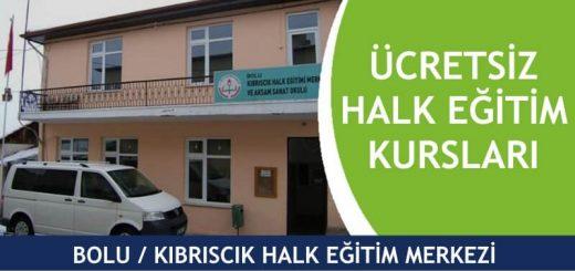BOLU-KIBRISCIK-Halk-Eğitim-Merkezi-Kursları-520x245