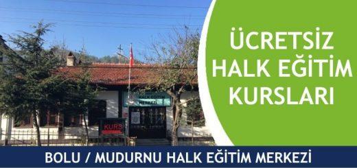 BOLU-MUDURNU-Halk-Eğitim-Merkezi-Kursları-520x245
