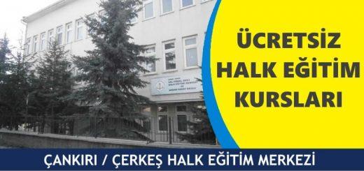 ANKIRI-ÇERKEŞ-HALK-EĞİTİM-MERKEZİ-520x245