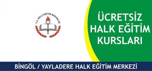 BİNGÖL-YAYLADERE-HALK-EĞİTİM-MERKEZİ-KURSLARI-1-520x245