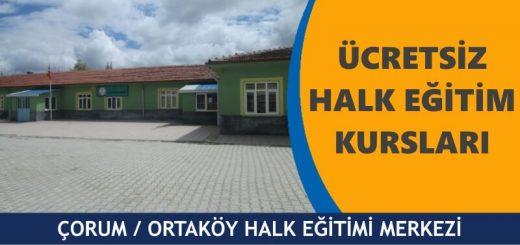 ORUM-ORTAKÖY-ucretsiz-halk-egitim-merkezi-kurslari-520x245