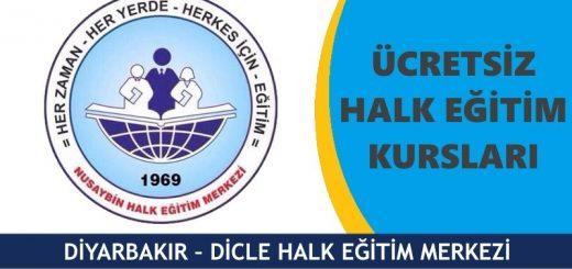 DİYARBAKIR-DİCLE-HALK-EĞİTİM-MERKEZİ-KURSLARI-520x245