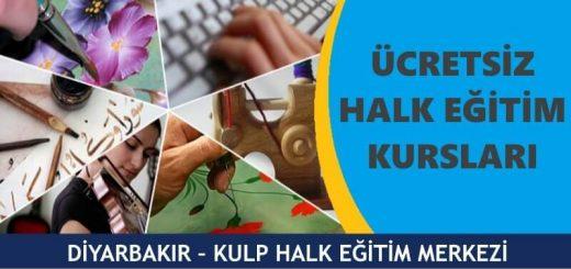 DİYARBAKIR-KULP-HALK-EĞİTİM-MERKEZİ-KURSLARI-520x245