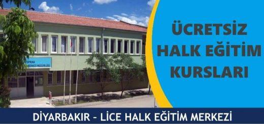 DİYARBAKIR-LİCE-HALK-EĞİTİM-MERKEZİ-KURSLARI-520x245